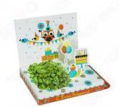 Набор подарочный для выращивания Happy Plants «С Днем рождения! Совенок»