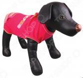 Платье для собак DEZZIE «Джеси»