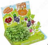 Набор для выращивания Happy Plant «Веселая грядка»
