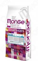 Корм сухой для котят Monge Ricco Di Pollo Kitten