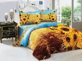 Комплект постельного белья Softline 09481. Евро