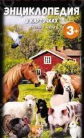 Домашние животные. Энциклопедия в карточках