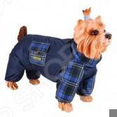 Комбинезон-дождевик для собак DEZZIE «Чихуахуа». Цвет: синий