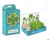 Набор подарочный для выращивания Happy Plant «Живая открытка: Поздравляю-Вырасти удачу!»
