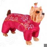 Комбинезон-дождевик для собак DEZZIE «Ши-тцу». Цвет: красный