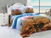 Комплект постельного белья Softline 09463. Евро