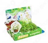 Набор подарочный для выращивания Happy Plants «Живая открытка: Лето в коробке»