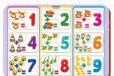 Набор обучающий для ребенка WoodLand «Рамка-вкладыш: Примеры 2»