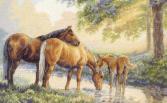Набор для вышивания Dimensions «Лошади у источника»