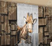 Фотокомплект: тюль и шторы ТамиТекс «Среда обитания»