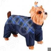 Комбинезон-дождевик для собак DEZZIE «Шпиц». Цвет: синий