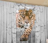 Фотокомплект: тюль и шторы ТамиТекс «Противоречие суждений»