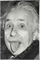 Визитница Mitya Veselkov «Эйнштейн»