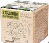 Набор для выращивания Экокуб «Гардения жасминовидная»