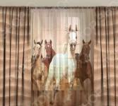 Комплект фотоштор с тюлем ТамиТекс «Лошади степей»