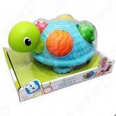 Игрушка развивающая для малыша B kids «Черепашка»