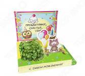 Набор подарочный для выращивания Happy Plants «С Днем рождения! Котик»