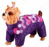 Комбинезон-дождевик для собак DEZZIE «Китайская хохлатая». Цвет: фиолетовый