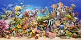 Пазл 4000 элементов Castorland «Подводный мир»