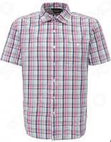Рубашка Finn Flare S16-22010. Цвет: синий