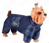 Комбинезон-дождевик для собак DEZZIE «Той-терьер». Цвет: синий