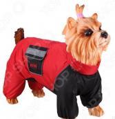 Комбинезон-дождевик для собак DEZZIE «Французский бульдог»