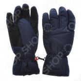 Перчатки горнолыжные Zanier 30010