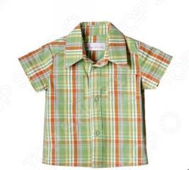 Детская рубашка Katie Baby London bus. Цвет: зеленый