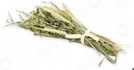Корм зерновой для грызунов JR Farm Knabber Straeusschen