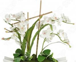 Декоративные цветы Dream Garden «Орхидея белая» на подставке
