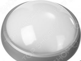 Светильник светодиодный Stayer Profi PROLight 57364-100-S