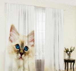 Фотошторы ТамиТекс «Белый кот». Количество полотен: 2 шт