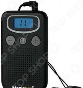 Персональный усилитель звука JH-A21 с ж/к дисплеем