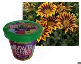 Набор для выращивания Зеленый капитал Вырасти, дерево! «Африканская ромашка» zk-031