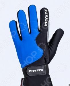 Перчатки для лыж KARJALA P171569. Цвет: синий, черный