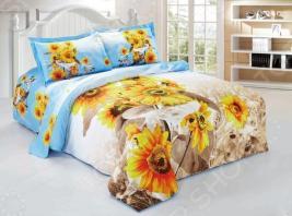 Комплект постельного белья Softline 10072. Евро