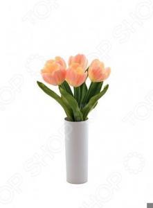 Настольная LED-лампа CТАРТ Тюльпаны 5