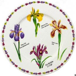 Тарелка обеденная Imari «Ирисы»
