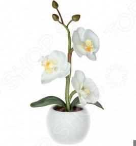 Светильник светодиодный «Волшебная орхидея». Цвет: белый