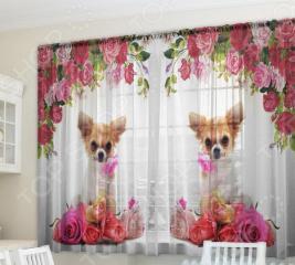 Фототюль Zlata Korunka «Собака и розы»