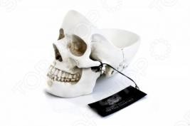 Органайзер для мелочей Suck UK Skull