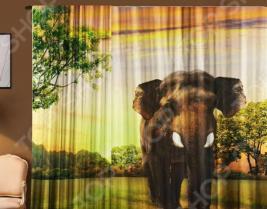 Фототюль Zlata Korunka «Слон»