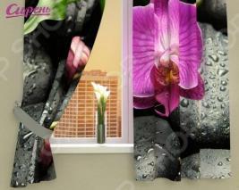 Фотошторы Сирень «Орхидея на камнях»
