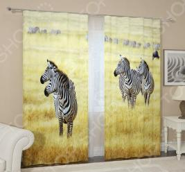 Фотошторы блэкаут Сирень «Стадо зебр»