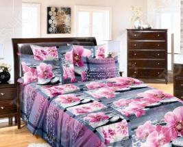 Комплект постельного белья ТексДизайн «Дикая орхидея». Семейный