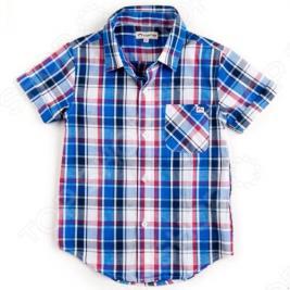 Рубашка детская Appaman Tilden Shirt. Цвет: голубой