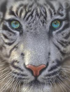 Пазл 500 элементов Educa «Белый тигр»
