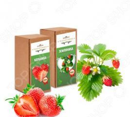 Набор для выращивания «Домашняя ягодница»