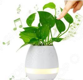 Кашпо для цветов с музыкой и подсветкой Music Flower Pon. В ассортименте