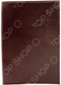 Обложка для паспорта Mitya Veselkov Spektr